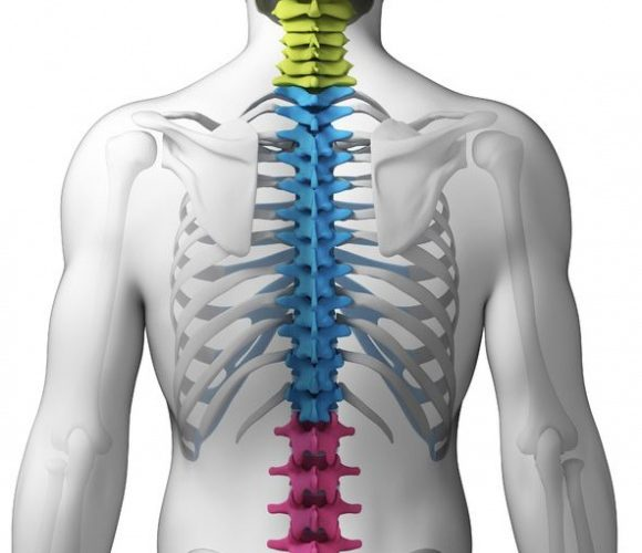 Spinal Fractures